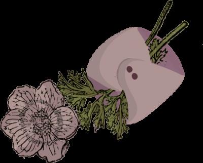 compresas-flor